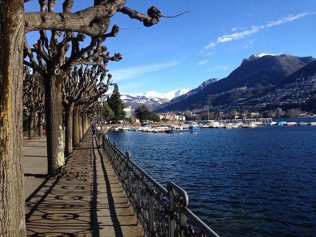 Il trust nel diritto svizzero @ Centro Studi Bancari - Villa Negroni